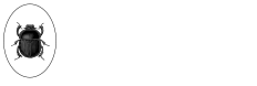Browns Club Logo